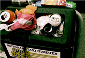 The Problems with Campus Garbage Recycling